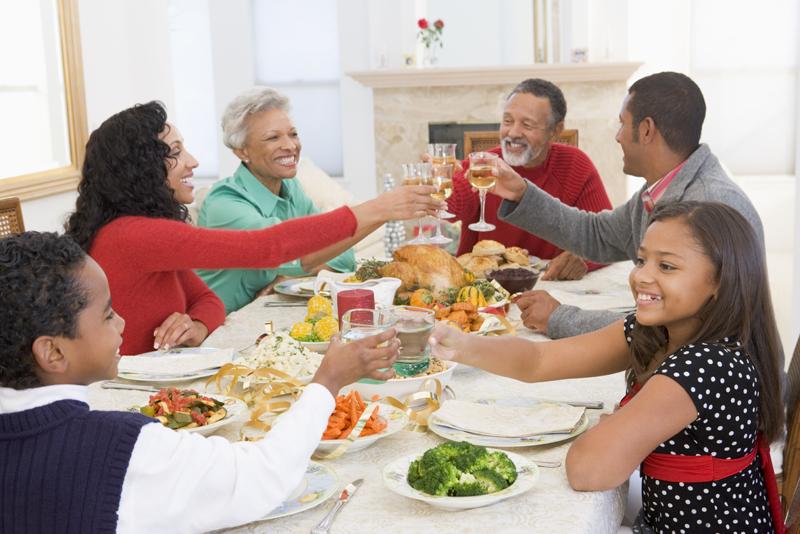 Family Bếp hồng ngoại Sanaky AT-102HG