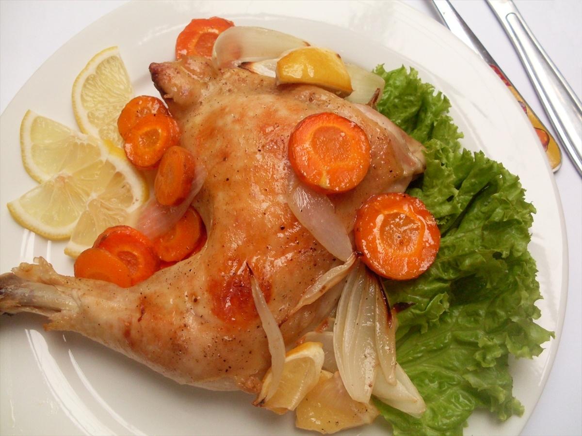 Thịt gà Bếp hồng ngoại Sanaky AT-102HG