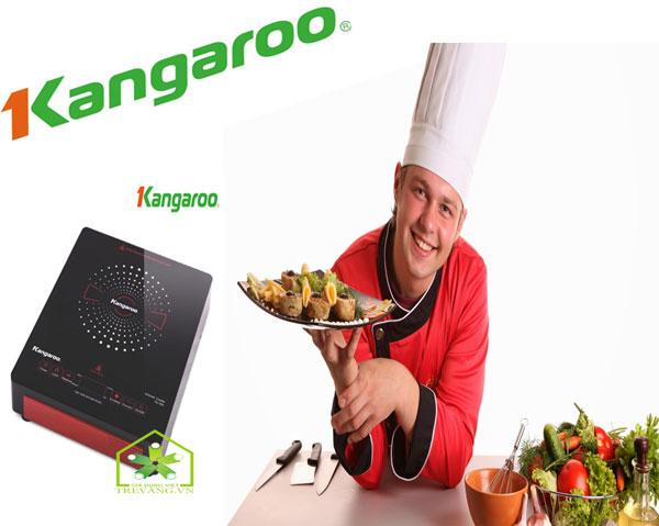 Bếp hồng ngoại Kangaroo KG383i là giải pháp nấu ăn ngon