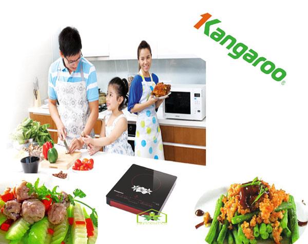 Bếp hồng ngoại Kangaroo KG384i không khói bụi