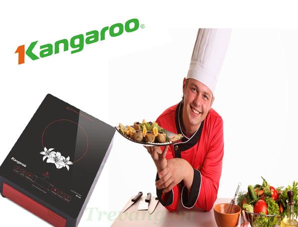 Bếp hồng ngoại Kangaroo KG384i là lựa chọn của bà nội trợ