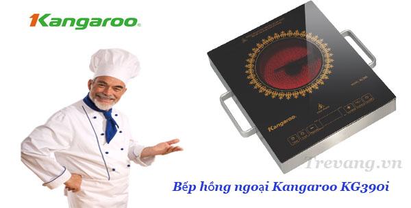 Bếp hồng ngoại Kangaroo KG390i chế biến những món ngon