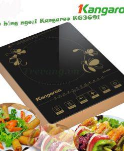 Bếp hồng ngoại đơn Kangaroo KG369i