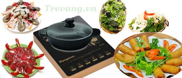 Bếp hồng ngoại đơn Kangaroo KG369i giải pháp nấu ăn nhanh