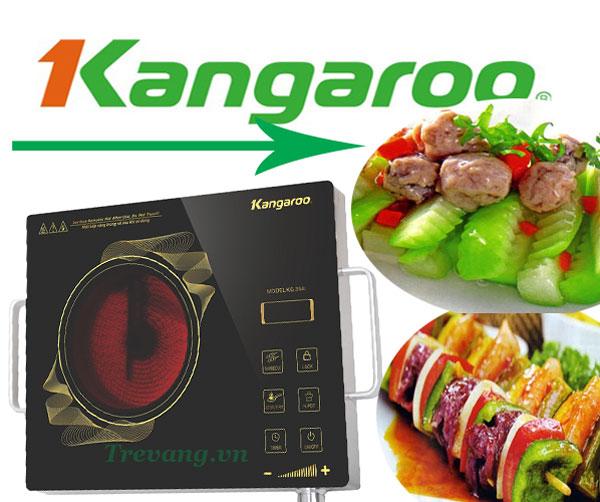 Món ăn ngon Bếp hồng ngoại Kangaroo KG394i