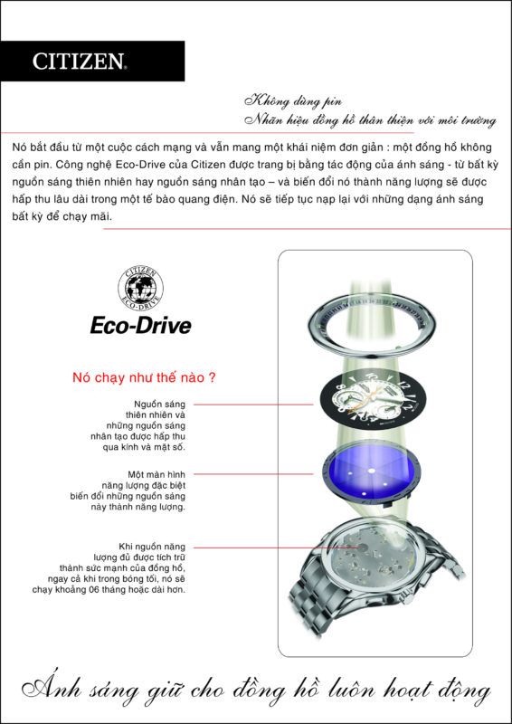Đồng hồ Citizen Eco-Drive cao cấp Nhật Bản