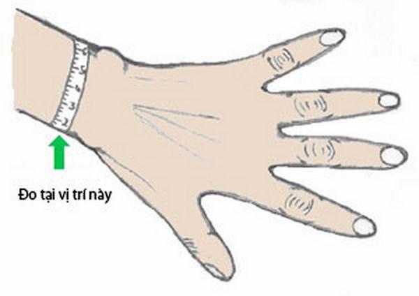 Vị trí đo cổ tay phù hợp kích cỡ của đồng hồVị trí đo cổ tay phù hợp kích cỡ của đồng hồ