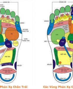 bàn chân ví như trái tim thứ 2