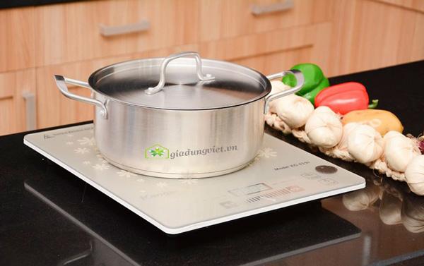 Bếp điện từ Kangaroo KG419i siêu mỏng