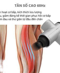 máy massage cầm tay Gun SL-8860 đầu tròn