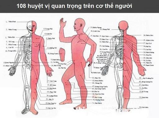 108 huyệt đạo trên cơ thể
